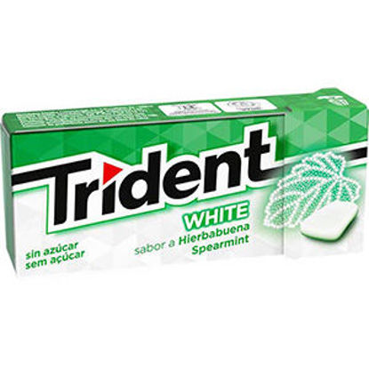 Picture of Past TRIDENT White Spearmint 14,5gr