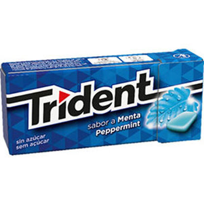 Picture of Past TRIDENT Fresh Peppermint 14,5gr