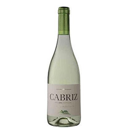 Imagem de Vinho CABRIZ Dão Branco 75cl