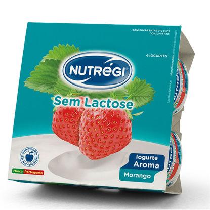 Imagem de Iog NUTREGI S/Lactose Aroma Mora 120gr