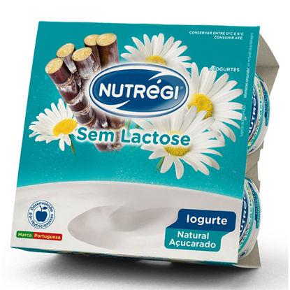 Imagem de Iog NUTREGI S/Lactose Nat Açucar 120gr